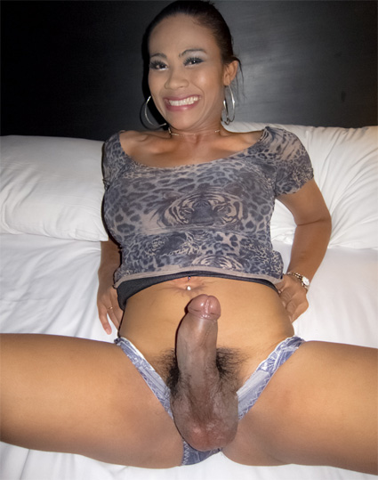 jasmine well hung ladyboy